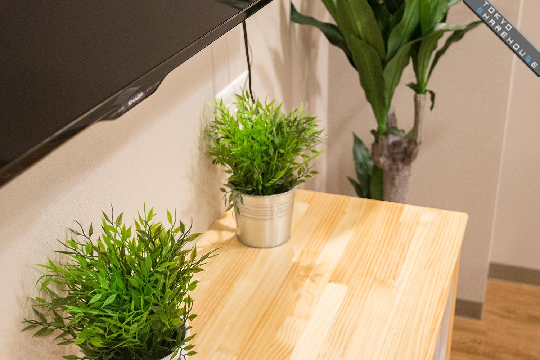 001coobeltule-itabashi(livingroom)