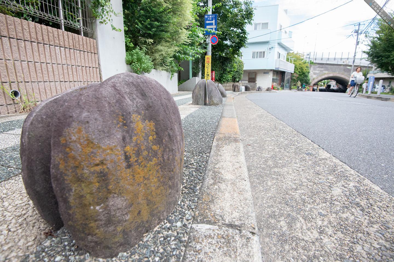 hutakotamagawa5